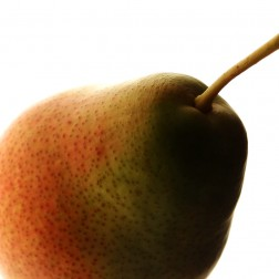 Close up of a pear